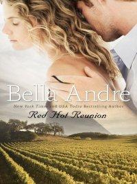 Bella Andre - Red Hot Reunion, e-kirja