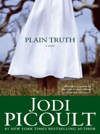 Jodi Picoult - Plain Truth, e-kirja