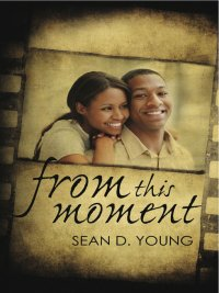 Sean D. Young - From This Moment, e-kirja