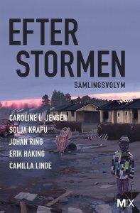 Johan Ring, Caroline Jensen L, Solja Krapu, Erik Haking, Camilla Linde - Efter stormen (utökad), e-kirja