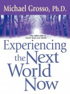 Michael Grosso - Experiencing the Next World Now, e-kirja