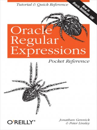 Oracle SQL Support for Regular Expressions